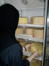 Παρασκευή τυριών